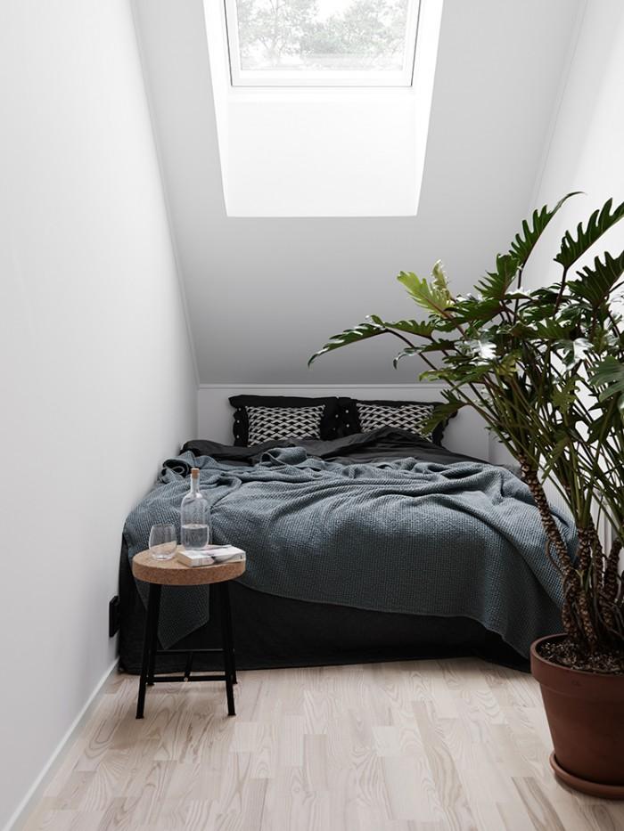 Smalle slaapkamer met grote plant