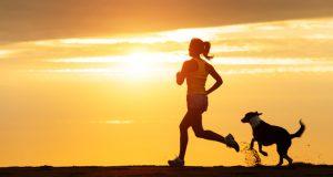 joggen-hond-tips