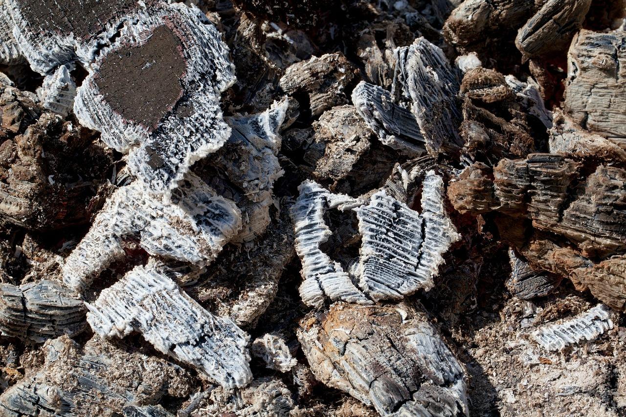 houtskool-tegen-tandplak