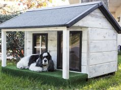 Hondenhok bouwen