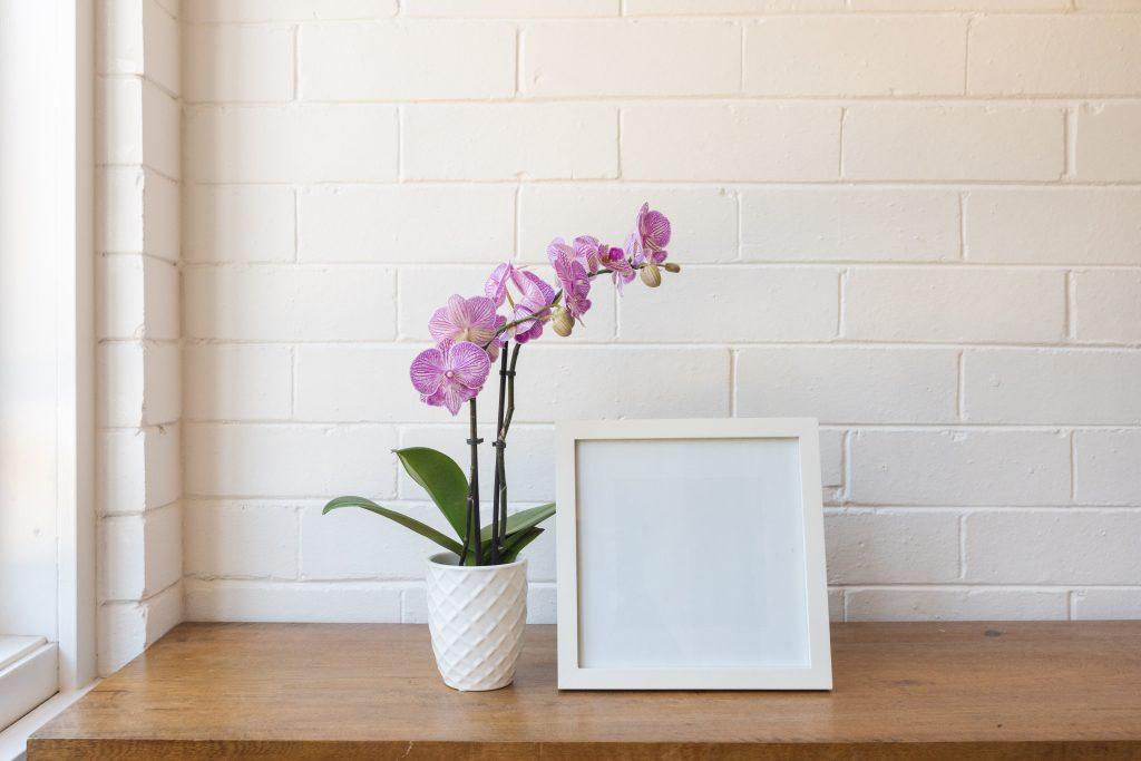 orchidee kunstplant